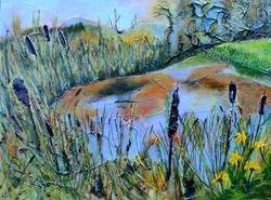 Ledson Marsh