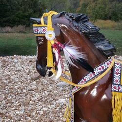 native merican tack set #14