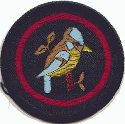 Bluetit Patrol Badge