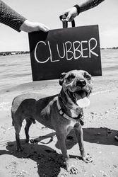 Clubber FKA Hercules