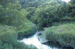Hay Creek, MN