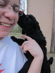 Kisses!  6 weeks old.