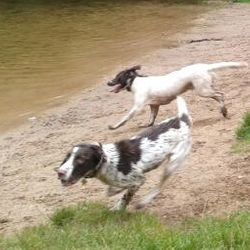 Me and Dotty playing