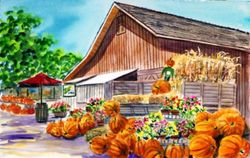 Pumpkin Time at Avila Barn