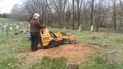 Cemetery Stump Removal