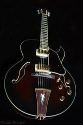 Bill's Ibanez Archtop Jazz Guitar Artcore AK-95-DVS