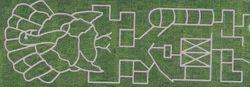 2018 Maze