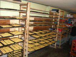 Biscuit Factory. Cayambe, Ecuador