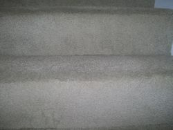Carpet Stairs After