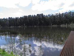 Mortchup Road Reservoir