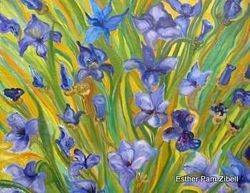 Patch of irises