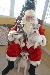 Santa at WCVB