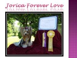 Jorica Forever Love