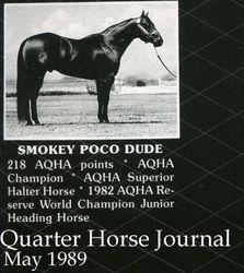 Smokey Poco Dude