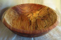 Spalted Birch #1815