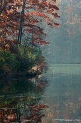 Clopper Lake 2