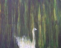 Swan beneath Williow