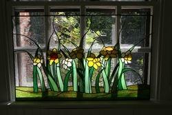Bell-Jo & Art's Daffodils