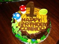 Nomeo and Juliett Smash Cake