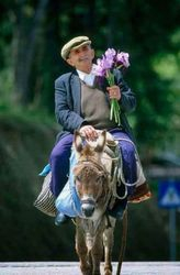 Even  by  the donkey , love is at most romantically expressed in May Day by an offer of  fresh flowers bouquet to the woman of his heart. In general Beauty is awarded by a May Flower bouquet, in each corner of Greece , especially on May D