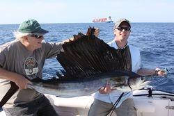 Sailfish  8/29/2012
