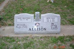 Elmwood Cemetery, Bowies, TX