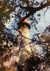 Located on Anastasia Island