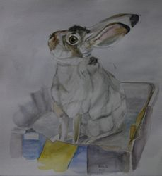 "Thumper (10.5 by 11.5"" water colour on paper) Collection of Artist"