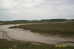 River Deben, Falkenham Creek