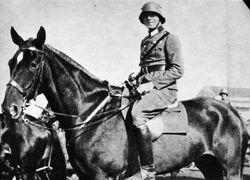 Heer Cavalry: