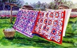 Quilts & Birds