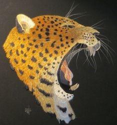 Amur Leopard ... NOT FOR SALE