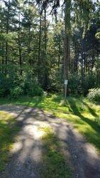 Chalet Forest Entrance