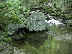 Uisage Ban Falls Provincial Park - View 1