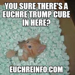 You sure there's a Euchre trump cube in here?