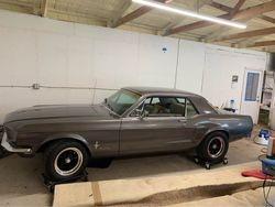 31.68 Mustang