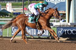 Stellar Wind wins the Zenyatta Stakes