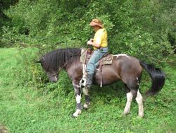 Hint-of-Autumn Trail Ride 9-24-11