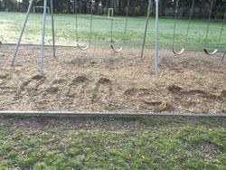 Beloved Swing set