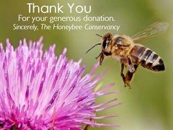 Honeybee Conservancy