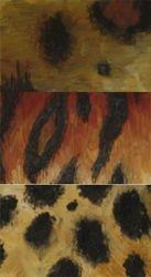 Animal Print Study - oil paintings