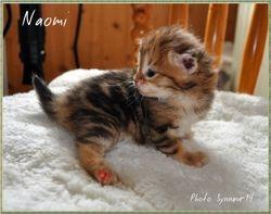 Naomi 3 weeks