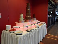 Triple Chocolate Fountain Hire at Proact Stadium Chesterfield.