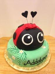 Baby Lady Bug Cake