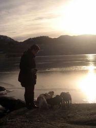 Meg & mopsene 12.02.11, Osen