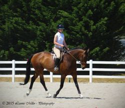 Spring Performance 4H Show 2015