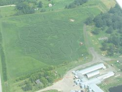 The CornMaze