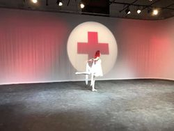 Red Cross 2019