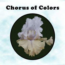 Chorus Of Colours