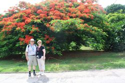 Lynda and Randy with flame tree in Marquesas